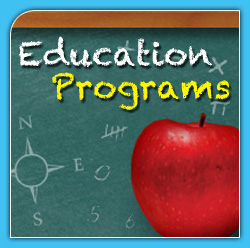 consultants education turkey